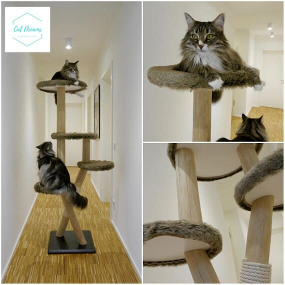 solid wood natural wood cat tree cat tree scratching post. Black Bedroom Furniture Sets. Home Design Ideas