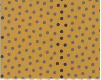 Sweet Blend Prints  Polka Dots by Edyta Sitar of Laundry Basket Quilts for Moda 42215 14