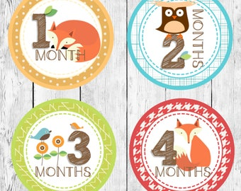 Skip Hop Treetop Inspired Monthly Baby Onesies/ DIY Printable Iron On Stickers/ Woodland Instant Download/ Newborn Milestone Shower Gift