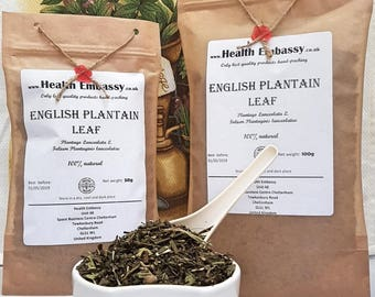 English Plantain Leaf (Plantago Lanceolata L. - Folium Plantaginis lanceolatae) - Health Embassy - Organic