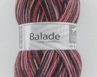 big ride 403 yarn skein has socks
