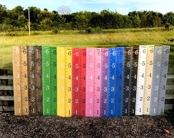 Kids growth chart ruler / wood growth chart / hieght measuring stick / hand painted / baby shower gift