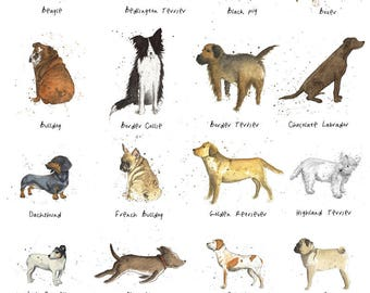 British Dog Breed Poster Print Michelle Campbell Art