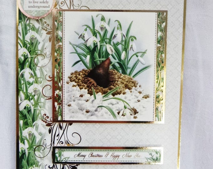 Mole Christmas Card, Greeting Card, Snowdrops and Mole, Green White and Gold, Male or Female, Mum, Dad, Sister, Brother