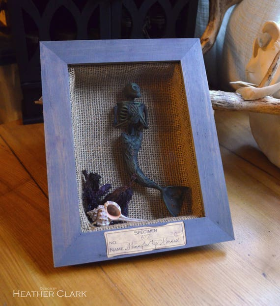 Mummified Fiji Mermaid Shadow Box Display