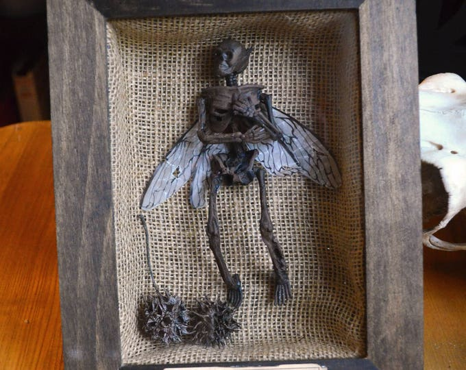 Featured listing image: Petrified Fairy Shadow Box Display