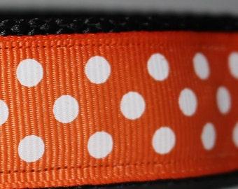 """Blue or Orange Dot Print Dog Collar (1"""") - Side Release Buckle"""