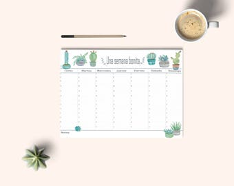 Weekly planner, desk planner, organize tasks, calendar, weekly plan, pretty stationery, gift idea, catus weekly planner. Watercolor planner