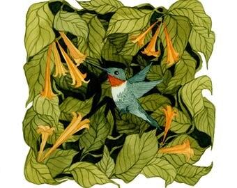 The Ruby Throated Hummingbird