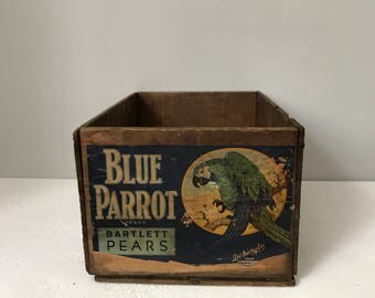Vintage Earl Fruit Company California / Wooden Crate / Blue Parrot brand Bartlett Pears