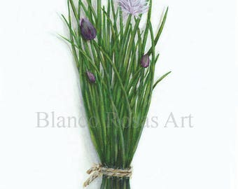 A6 Chives