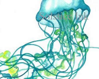 Teal Jellyfish Print