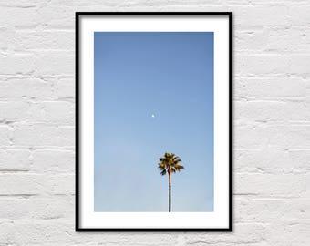 Evening Palm Print, Palm Tree Print, Printable Palm Tree Art, Moon Print, Botanical, Large Wall Art, Tropical Photo, Beach Decor Photography