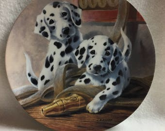 Knowles It's a Dog's Life Collector Plate - 'We've Been Spotted' - Dalmatian Puppies (#134)