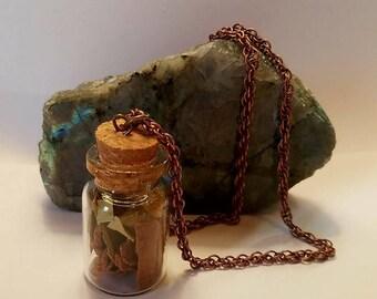 Prosperity Potion Bottle Necklace Cinnamon bark, Bay Leaves, Citrine Chips
