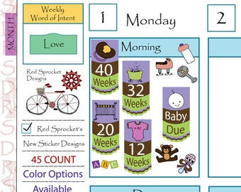 Pregnancy Countdown (45 Count) Planner Stickers - Color Options Available (PCPG01, PCBP01, PCP01, PCB01)