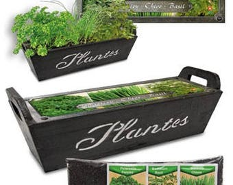 Wooden basket with cooking herbs-kit