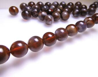 10 pearls 12mm round brown white iridescent mother of Pearl