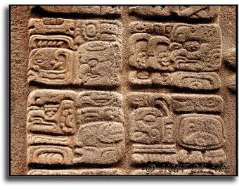 Mayan hieroglyphics, Maya writing or glyphs, Mesoamerican writing, Mayan script. Quirigua, Guatemala. Instant digital download photography.