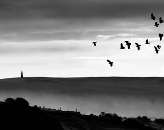 birds above Stoodley Pike, Todmorden (photograph)
