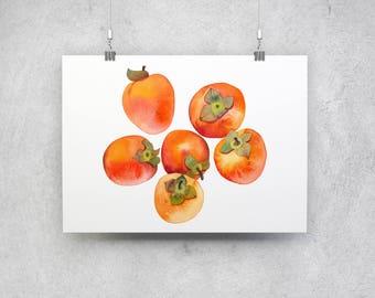 Persimmon Art Print, Persimmon Wall Art, Persimmon Illustration, Watercolor Persimmons, Fruits Art Print, Botanical Home Decor, Diospyros