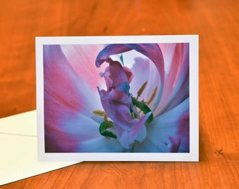 Pink Flower Greeting Card, Floral Note Card, Nature Photography Fine Art Card, Blank Card for Mother's Day or Any Occasion, Photograph Card