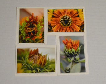 4 Fine Art Bronze Sunflower Greeting Cards, Sunflower Notecard Set, Sunflower Stationary Set