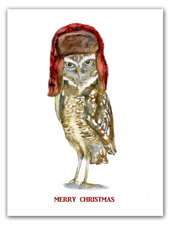 Burrowing Owl Christmas Cards Trapper Hat Woodland