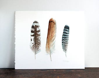Feathers Original Watercolor, hawk, birds of prey feathers painting
