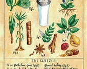 Botanical 151 Swizzle (Classic Tiki Cocktail) Print