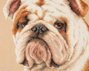 NEW UNOPENED Counted Cross Stitch KIT Wonderful Needle 59-21 English bulldog Animals