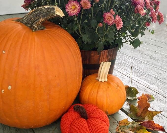 Knitted Pumpkin, Wool Knit Pumpkin, Tiger Lily Orange Knit Pumpkin