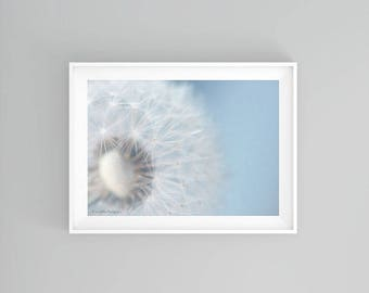 Dandelion Art Print, Baby Nursery Wall Art Print, Baby Blue Wall Art, Powder Room Wall Decor, Minimal Art Print