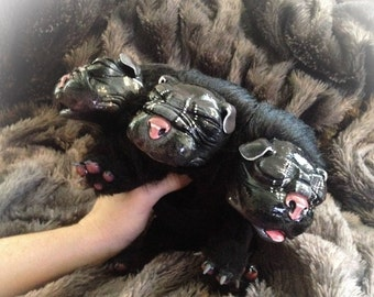 New Born Cerberus Pup Art Doll, stuffed animal, cute puppy doll