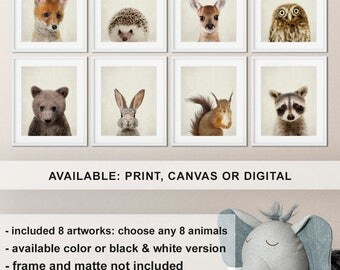 Baby Forest Animal Nursery Prints set 8, Woodland Animals Nursery, Woodland Nursery Animals, Woodland baby animal pictures, Forest creatures