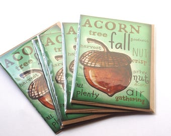 Green Acorn Fall Set of FOUR Blank Note Card with original art by Cortney Rector Designs