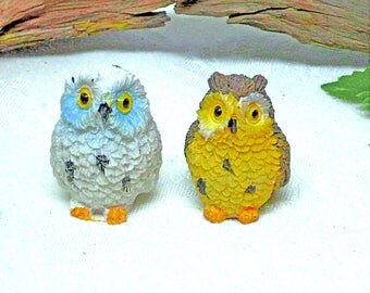 Minature Owls White Snowy Owl Brown Barn Owl Fairy Garden Kit Garden Accessory Inside or Outside Fairy Accessory
