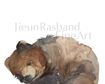 "sleeping bear -11""x14"" instant print"