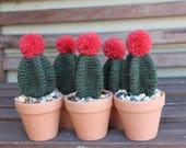 Crochet star Cactus, Crochet Cactus, Amigurumi cactus, Crochet plant, Desk decorations, Housewarming gift, Baby room decor