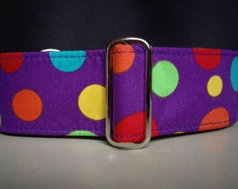 "Martingale Collar - Whippet, Greyhound, Italian Greyhound - 1"", 1.5"" and 2"" width - Spots on Purple"