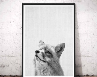 Fox Print, Printable Woodland Nursery Fox Wall Art Decor, Fox Printable Baby Print Art, Baby Forest Animal Poster, Black and White Animals