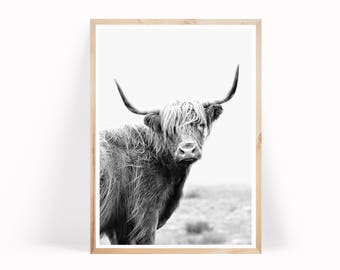 Highland Cow Printable Art, Cow Wall Art, Nursery Print, Black and White Highland Cow Poster, Cow Print, Instant Download, Art Prints