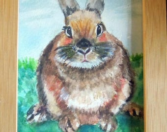 rabbit mini artwork -Anne Sunderwirth