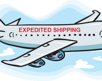 Expedited US Shipping