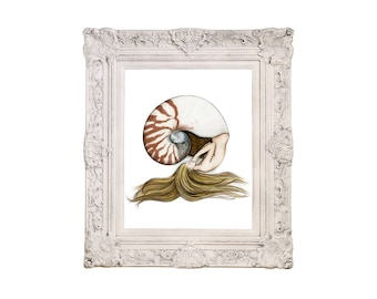 8x10 inch PRINT Mermaid Sleeping in Nautilus Shell Art Print Colour Pencil Drawing Coastal Home Beach House Nautical Decor Signed