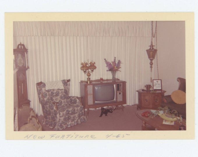 "Vintage Snapshot Photo: ""New Furniture, April 1965"" (75584)"