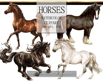 Horse Clipart, Digital Watercolor Illustration, Animal Clip Art, Hand-painted, Realistic Horses Stock Illustration, Commercial use