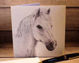 Hand Drawn Horse Greeting Card. Pencil on Paper