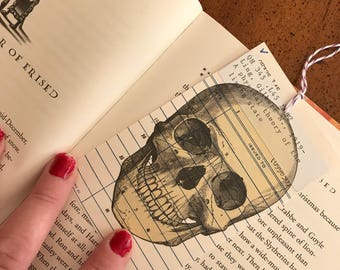 Human Skull Beige Vintage Library Due Date Card Bookmark / Anatomy / Library Nostalgia