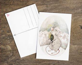 Postcard Greeting Card Mountain Mouse